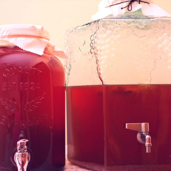 kombucha, continuous brew, brew at home, the big book of kombucha, sweet tea, SCOBY