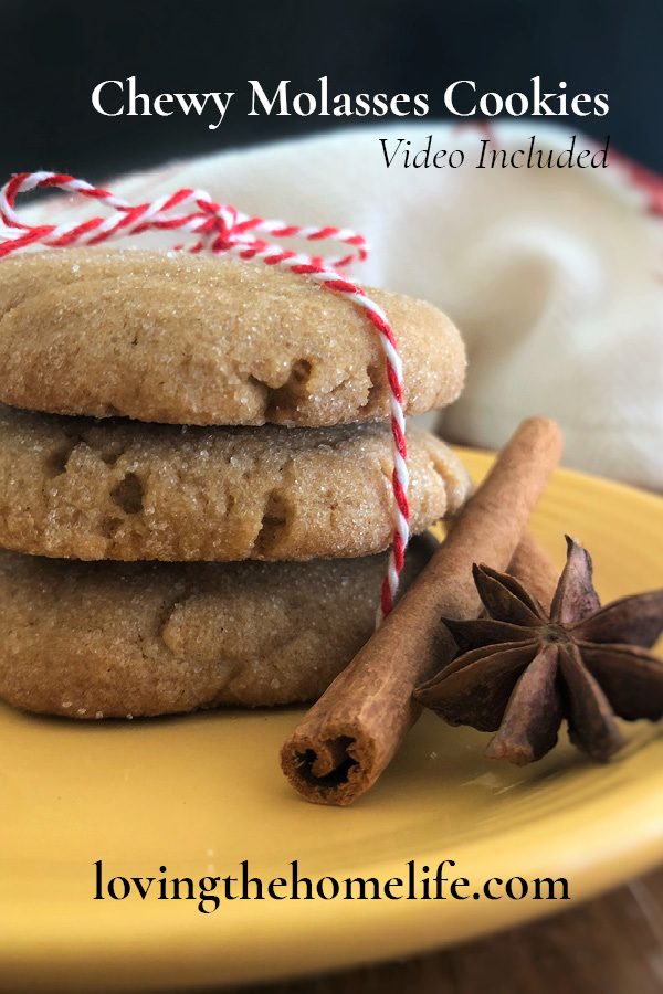 Chewy-Molasses-Cookie-Pin